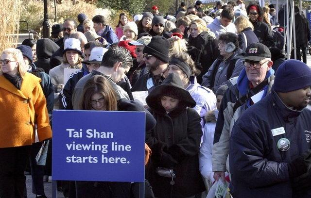 Dec. 8, 2005: The public waits in line to see Tai Shan during the first public viewing day at the National Zoo. Tai Shan was born July 9, 2005 at 3:41 a.m. He is the first surviving giant panda cub born at the Smithsonian National Zoo. D.C. Mayor Adrian Fenty once called Tai Shan Washington's most important citizen. He was originally supposed to be sent to China when he turned 2, but under an agreement with the Chinese government, the zoo kept him for an additional two years.