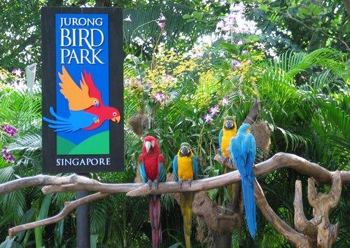 [图]新加坡裕廊飞禽公园