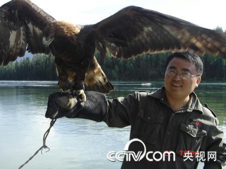 喀纳斯湖畔的神鹰