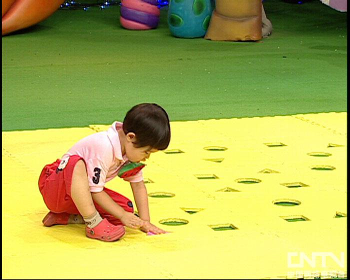 西瓜桔子做游戏送形状宝宝回家