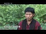 《中华民族》神奇而美丽的土地——双江