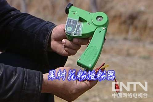 果树花粉授粉器使用技术