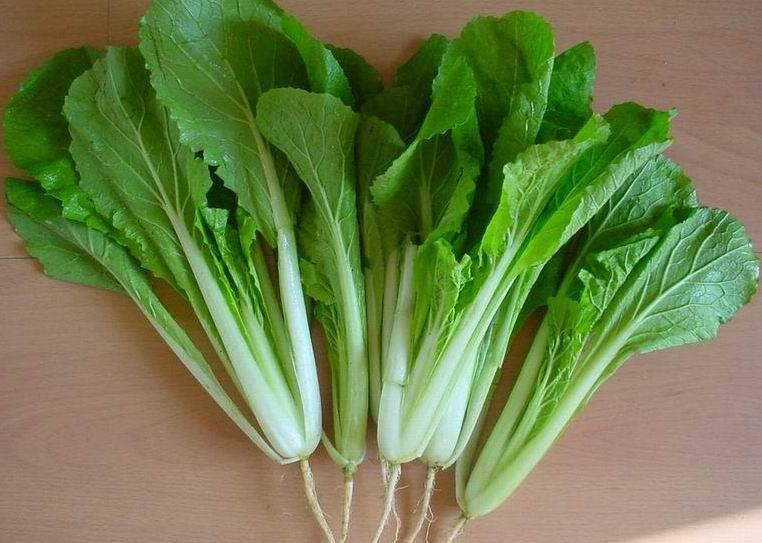 蔬菜健康减肥食谱一:小白菜