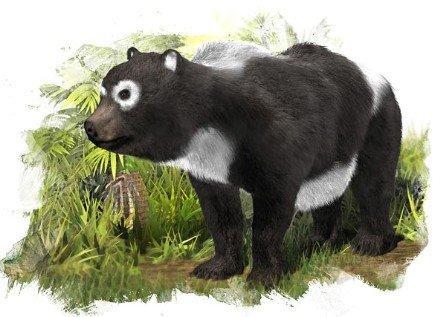 生活在距今1100万年前的史前大熊猫亚科