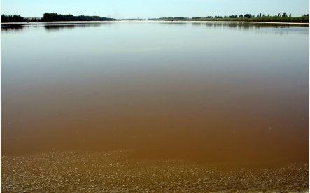 黄河流域最大的淡水湖乌梁素海被污染的河道。第一财经日报章轲摄