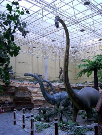 北京自然博物館:探索大自然的奧秘