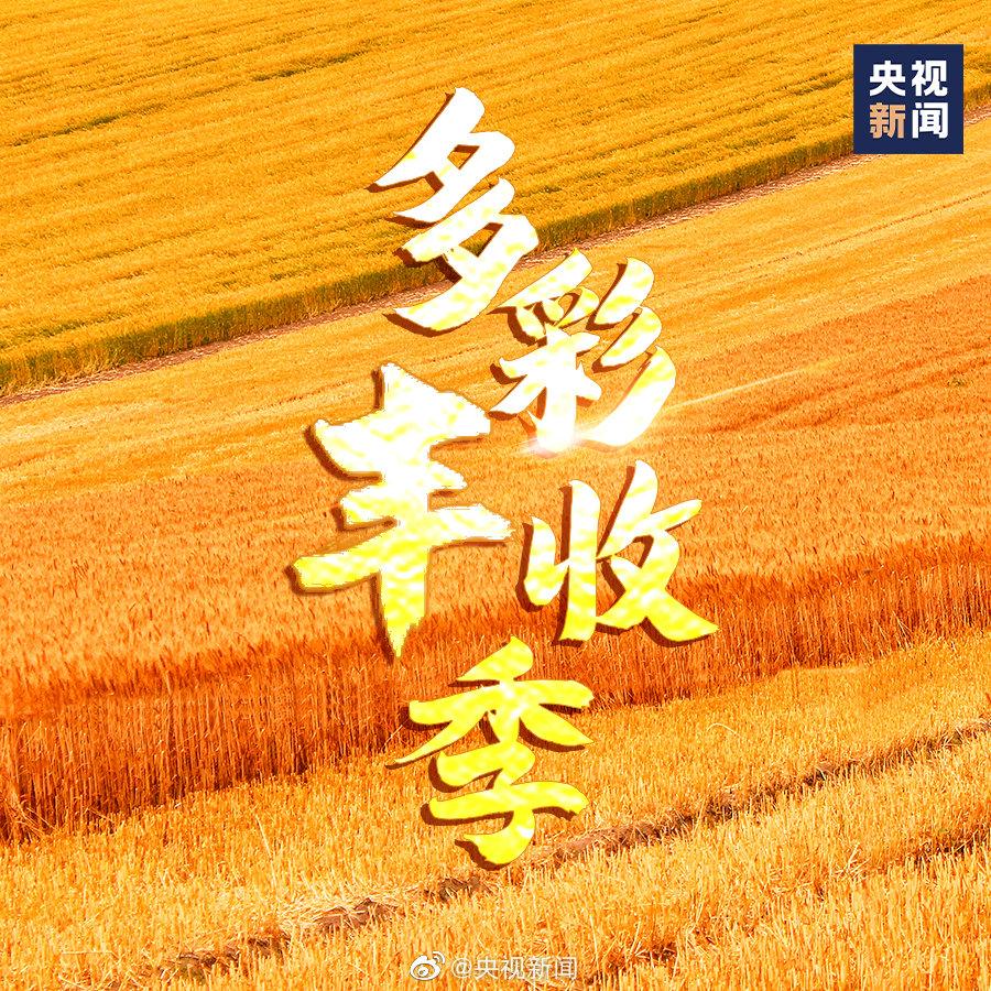 今日秋分 一起庆丰收!9图看中国多彩丰收季