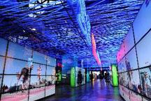 Untold stories: Shanghai Expo - Episode 4:  No. 81 case study