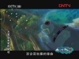 《动画乐翻天》 20120302