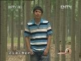 天津郭昕:养柴鸡的留学生