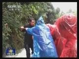 [视频]湖南郴州:山洪引发泥石流 官兵紧急救援被困游客