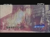 《小崔说事》 20120716 武昌城里看风景