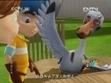 逍遥游世界18 救鸟突击队 动画大放映学龄前版 20120727