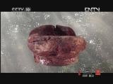 《探索·发现》 20120731 中华龙(十一):龙情未了(下)