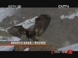《地理中国》 20120803 暑期特别节目《地球家园》——鹰屯庄的秘密