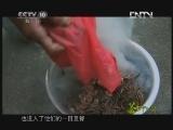 《茶叶之路》 20120804 第二十七集 浮梁茶味