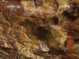 《文化大百科》 20120813 寿山石