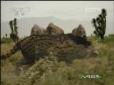 《人与自然》 20120815 自然发现 与古兽同行(二)