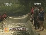 刘勇泥鳅养殖:从自家屋顶开始的财富