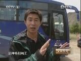 罗�D养藏獒:雪域高原藏獒情