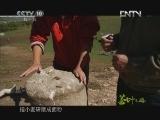 《茶叶之路》 20121007 第九十一集 茶路遗踪