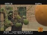 《走遍中国》20121116中国古镇(87)陈炉镇:耀瓷瓷趣