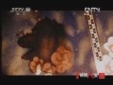 《科技人生》 20121125 中国法医系列—欧拉