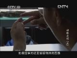 《见证》 20121126 神眼追踪(五)