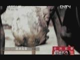 《自然传奇》 20121202 自然故事 遭遇猛兽