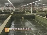 郭炳坚鲍鱼养殖致富经:一场行业危机引发的财富爆发
