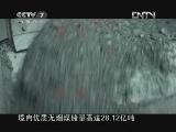 《中国武警》 20130127 被警方关注的婚礼