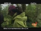 【音画欣赏】《远方的家》北纬30°·中国行视频1 - 飘逸人生 - 逸仙居音画苑