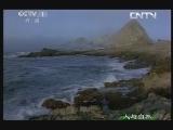 《人与自然》 20130703 自然发现 大白鲨(下)