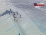 2014索契冬奥会 自由式滑雪男子障碍争先赛决赛 20140220