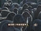 内蒙古赵焕军养羊致富经,被误解13年的财富牛人