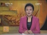 [农广天地]小型无籽西瓜稀植多果栽培技术(20140303)