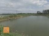 水产养殖农广天地,麦瑞加拉鲮鱼养殖技术(20140323)