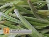 茶叶品评技法农广天地,茶艺