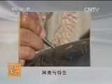[农广天地]日照黑陶(20140606)