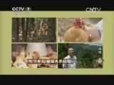 黄雄养养鸡致富经,为了女儿 爸爸去养鸡啦(20140812)