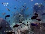 《自然》 20141001 地球脉动 第三集 淡水资源
