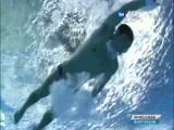 [夺金时刻]邱波获得跳水男子10米台金牌