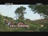刘君凤特色养殖致富经,卖房进村 辣妹赚钱有高招(20141113)