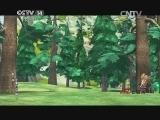 [银河剧场]《熊出没之春日对对碰》 第12集 咖啡的故事