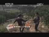 冯仁方橘子致富经,爸爸赔钱 儿子帮您赚(20150123)