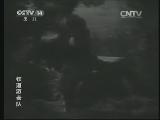 《经典电影》 20150627 电影《铁道游击队》