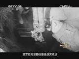 [探索发现]1915青岛永不能忘 第三集 趁火打劫 日德青岛对抗血战三个月