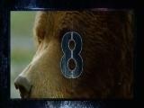 [自然传奇]终极动物倒计时第五集预告片