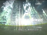 《地理中国》 20151022 奇居之地·解密药王谷(上)
