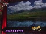[共筑中国梦]歌曲《天耀中华》 演唱:王宏伟